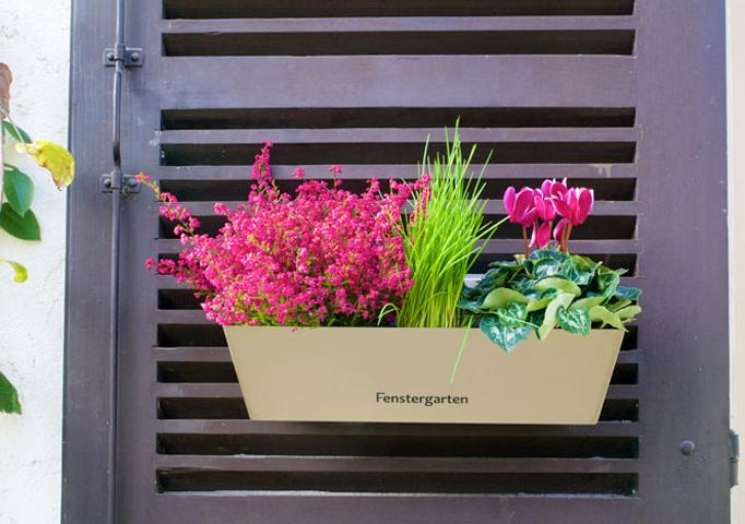 Fenstergarten von Christian Riedwyl